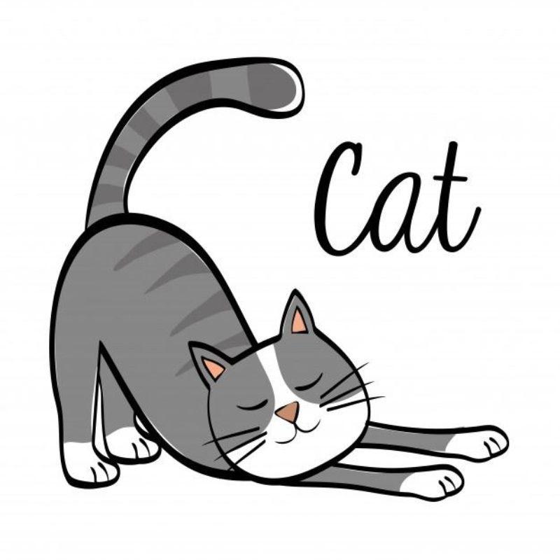 mascherina-uso-civile-con-filtro-gatto-grigio