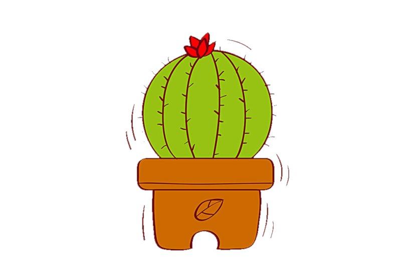 mascherina-uso-civile-con-filtro-cactus-2